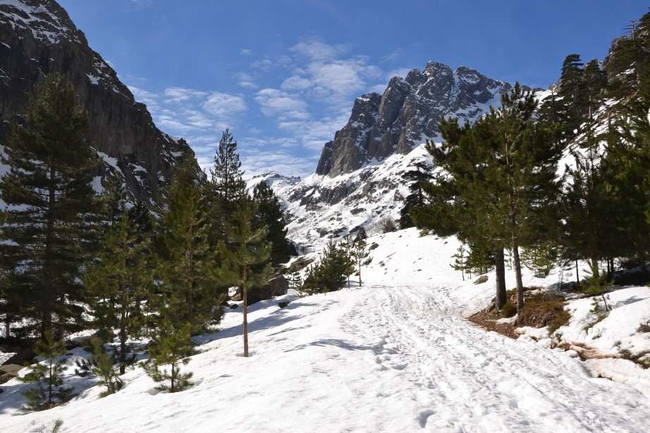 Février 2015 Ski Restonica