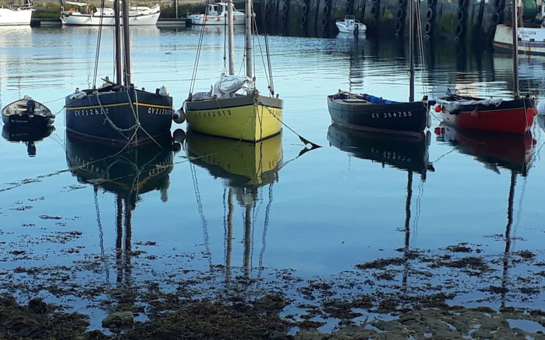 Voyage aux Scilly